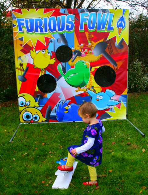 Furious Fowls Fling Game